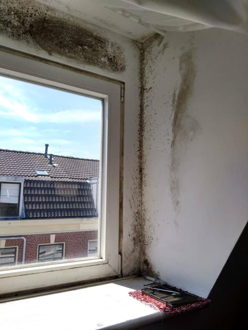 Hulp voor bewoners in Haarlemse Transvaalbuurt