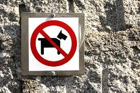 Een huisdier in je woning, kan de VvE dit verbieden?